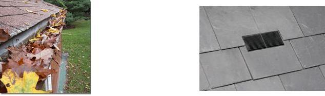 Gutter Debris and Roof Ventilation Solutions